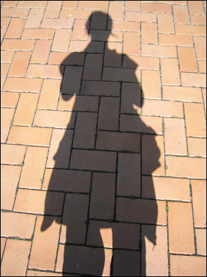 shadow at wellington airport